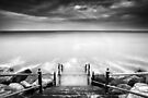 The Lure of The Sea BW by Andy Freer