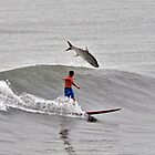Surfer   V/R   snook or tarpon  by Davidsdigits