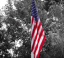 Color Flag in a Black and white world by Jennifer P. Zduniak
