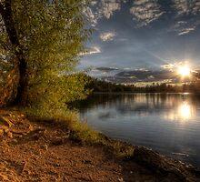 Shore Shine by Bob Larson