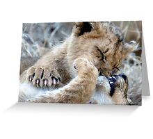 Mom, He Is Biting My Nose Again! Greeting Card