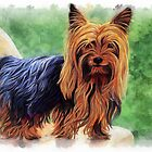 Yorkshire Terrier by ellenspaintings