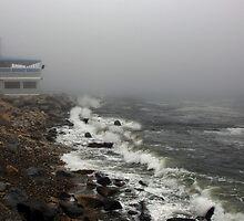 Storm at Narragansett Bay  by John  Kapusta