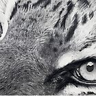 The Art of Ted Mobley - Wildlife Edition by mobleyart