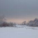 Evening, Landscape in the ice by cishvilli