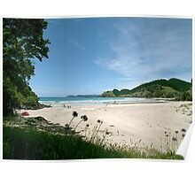 North Whananaki beach - New Zealand. Poster