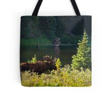 Moose At Brainard Tote Bag