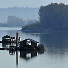 Foggy River by MaluC