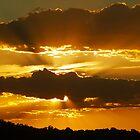 golden glowdown by Christine Ford