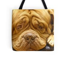But why cant I have a bone ?? Tote Bag