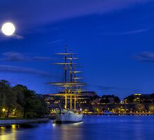 Ship in moonlight. by cloud7