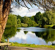 The old seat by the River Nore, Inistioge, County Kilkenny, Ireland by Andrew Jones