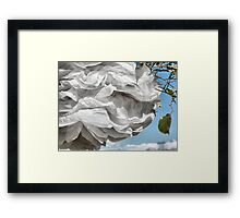 Paper White. Framed Print