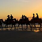 Camels at Sunset by Susan Segal