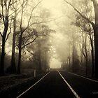 Morning Mist by onemistymoo