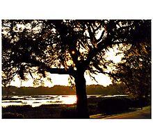 Beaufort Sundown Photographic Print