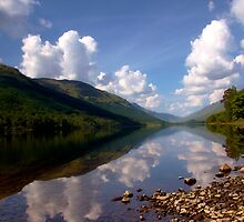 Voil Reflections by Alison Scotland
