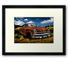 SuperWasp Framed Print