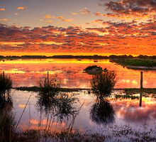 Sensational reflections at Rivoli Wetlands, near Beachport by Elana Bailey
