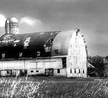 Grand Old White Barn  by Marcia Rubin