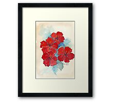 Red & Blue Hibiscus Framed Print