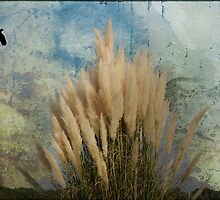 Pampas Grass textured and layered by imagetj