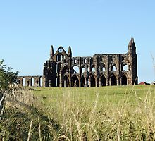Whitby Abbey by Jervaulx