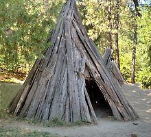Tepee Hut by Diego  Re