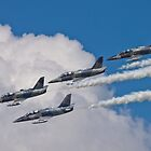 L-39 Albatross Formation 2 by Anthony Roma