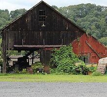 Barn on River Road-Erwina, PA by Melinda Ramsay
