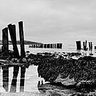 Coastal defences, Courtmacsharry Bay, West Cork, Ireland by Andrew Jones