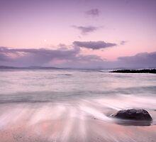 Coasts of Tasmania by James Nielsen