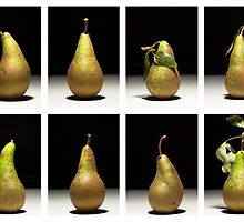 Uniformity-Pears by maxblack