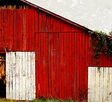 Tobacco Barn by Sandy Dunn