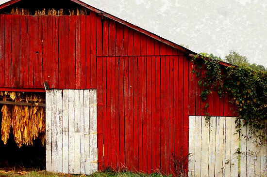Functionally Classified Barn : Quot tobacco barn by picture it redbubble
