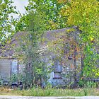 Abandoned House by venny