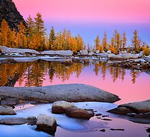 Pink Gnome Tarn by Inge Johnsson