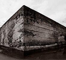Bunker (B&W) by PaulBradley