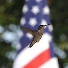 """Patriotic Hummingbird"" by Doyle  McClung"