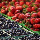 Berry Medley by Michael L. Colwell