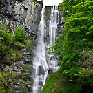 Water Drop or Water Fall by Rosestone