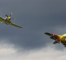 Miss Demeanour + Sea Fury by missdemeanour