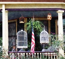 Porch With Bird Cages by Susan Savad