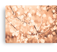 autumn bokeh Canvas Print