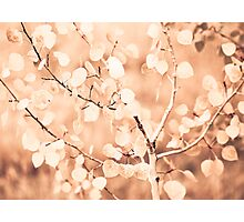 autumn bokeh Photographic Print