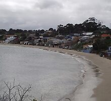 seaside living at Opossum Bay by gaylene