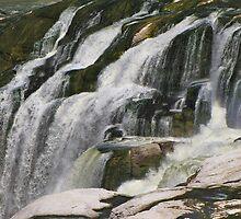 Part of Shoshone Falls....Twin Falls Idaho by trueblvr