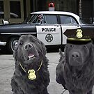 "☞ º°""˜`""°☜♥☞CANINE POLICE DOGS- BAD BOYS THEME TAKEN FROM THEME SONG ☞ º°""˜`""°☜♥☞ by ╰⊰✿ℒᵒᶹᵉ Bonita✿⊱╮ Lalonde✿⊱╮"