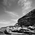 Rocky - Bateau Bay by Jacob Jackson