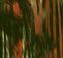Bamboo forest 2 by Marlies Odehnal